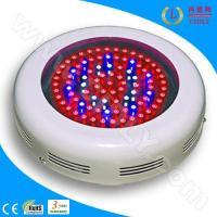 Quality 90W LED Indoor Grow Lighting for sale