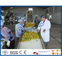 Buy cheap Complete Turn key Project Mango Fruit Juice Processing Line High Engery Saving product
