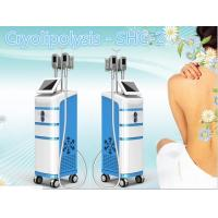 Buy cheap 2016 newest!!!CE approval  beauty tighten cryolipo cool shape system product