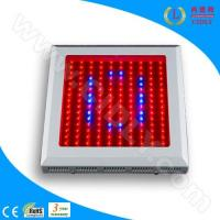 Buy cheap LED Hydroponics Grow Lights (CDL-G150W) product