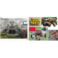 Buy cheap Tournament Grade Paintball Encapsulation Machine With Pid Temperature Control from wholesalers