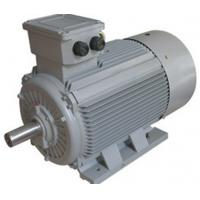 Buy cheap Y2  Series IEC Standard Motor Three Phase Induction Cast Iron Motor Conformity With IEC34-1 product