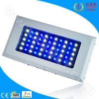 Buy cheap 165W (55*3W) LED Aquarium Light With 2 Switches (CDL-A120W) product
