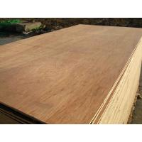Buy cheap packing plywood / commercial plywood / furniture plywood product