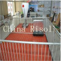Buy cheap High quality pig equipment nursery crates from wholesalers