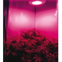 Buy cheap New no fans LED grow light-X-Grow series for hydroponics product