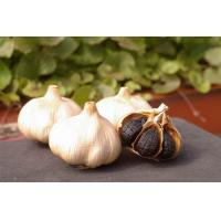 Buy cheap Natural Fermented Black Garlic Wholesale product