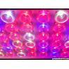 Buy cheap New hot sale high power led grow light 756w full spectrum lighting from wholesalers