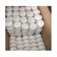 Buy cheap Bulk Braid Garlic For Sale product