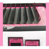 Buy cheap 5d premade eyelash extension from wholesalers