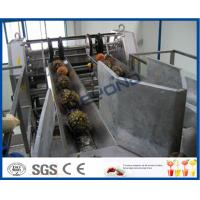 Buy cheap Fully Automatic PLC Control Pineapple Processing Line For Fruit Juice Processing Machines product