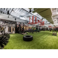 Buy cheap UV Resistant Gym Artificial Grass product