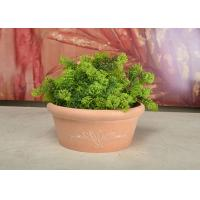 Buy cheap Plastic Small Tabletop Herb Planter , Decorative Round Flower Pots For Plants product