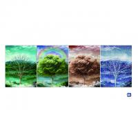 Buy cheap 3D Flip Lenticular Poster Printing With 12x17 Inches Four Season Tree product