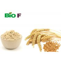 Buy cheap Food Additives Pure Plant Protein Powder , Water Soluble Wheat Protein Powder product