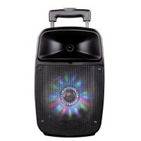 Quality Bluetooth Function Rechargeable Portable Trolley Speakers With Led Lights for sale