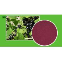 Buy cheap Ribes Nigrum L Organic Food Ingredients Blackberry Fruit Powder With Flavonoids product