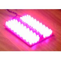 Buy cheap good quality and best ratio grow light product