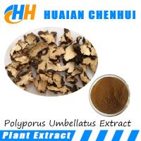 China High quality Polyporus Umbrellatus Extract 25% 30% purity/ Chuling Root P.E. 85% Polysaccharides on sale