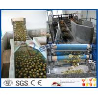 Buy cheap Pineapple Processing Juice Factory Machinery With Fruit Juice Packaging Machine product