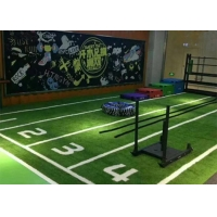 Buy cheap PE Gym Artificial Grass product