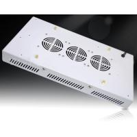 Buy cheap single 3W LED Grow Light for indoor plants harvest from wholesalers
