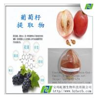 China Grape Seed Extract For Skin Wrinkles on sale