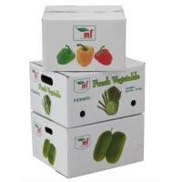 Quality Eco - Friendly Vegetables Packing Boxes  Plain Cardboard Boxes For Food Packaging for sale ...  sc 1 st  Corrugated Packaging Boxes Corrugated Shipping Boxes and Cardboard ... & Eco - Friendly Vegetables Packing Boxes  Plain Cardboard Boxes For ...