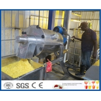 Buy cheap Fruit Juice Double Stage 10TPH Mango Processing Line product