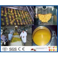Buy cheap Mango Pulp Processing Machinery Mango Processing Line With Aseptic Package Machine product