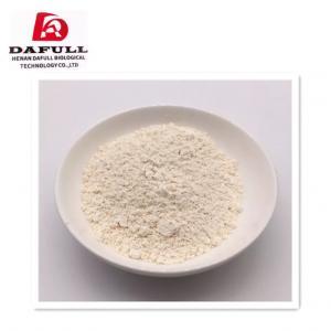 China Feed Grade Organic Garlic Powder Garlic Powder Bulk Garlic Powder on sale