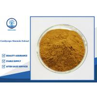 Buy cheap CAS 73-03-0 Cordyceps Sinensis Extract 10%-98% Cordycepin For Food Supplement from wholesalers