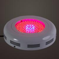Buy cheap High intensity led grow light with no fans for flowering plants product