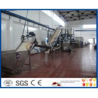 Buy cheap 5 - 50 T/H Mango Processing Plant With Mango Pulp Machine ISO9001 / CE / SGS product