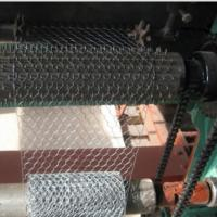 Buy cheap Electro Galvanized Chicken Wire Netting for Wall Plastering and Building product