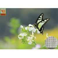 Buy cheap Anti - Butterfly Garden Mesh Netting For Protect Crops And Vegetables 40g/Sqm product