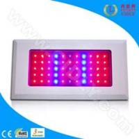 Buy cheap 55*3W LED Grow Light for Flowers, Garden, Greenhouse, Fruits product