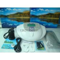 Buy cheap ion cleanse detox foot spa DM101 product