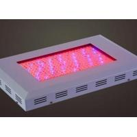 Buy cheap TJ-ZWD4 square LED large power grow light product