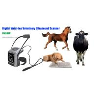 Buy cheap Digital Wrist-top Veterinary Ultrasound Scanner (BW560V) product