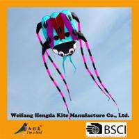 Colorful ladybug inflatable kite from china