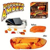 Buy cheap Discover Amber Science Kit product