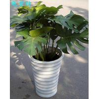 Buy cheap plant series 201512619284 product