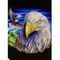 China Eagle, Super Soft Plush Mink Style Queen Size Blanket, 79 x 95, Q8948, 2 Ply on sale